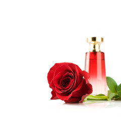rose and perfume