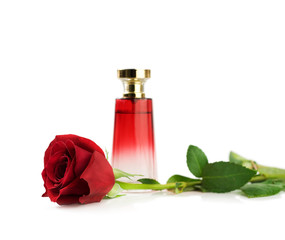 Red rose and perfume