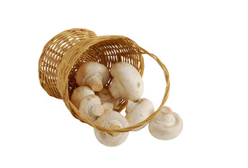 Fresh champignons spilled from small interwoven straw basket