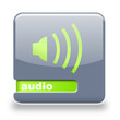 Button spare Audio grau grün