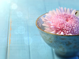 Fototapety Close up of chrysanthemum flower in bowl