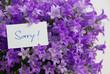 Sorry! mit Blumen