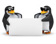 3d Penguins hold up a blank sign for you
