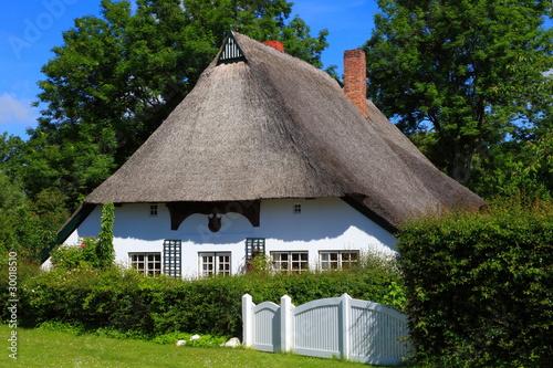 Reetdachhaus Haus im grünen Schleswig-Holstein