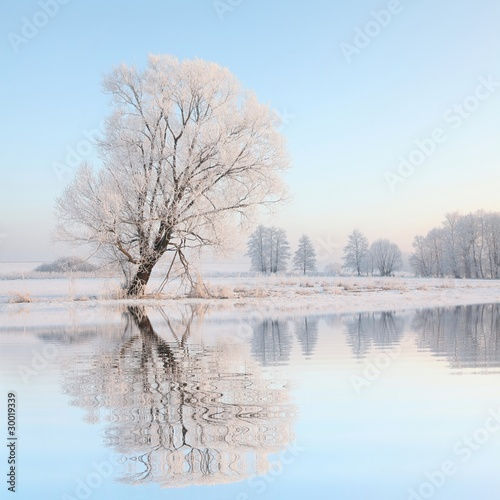 Winter landscape of frosted trees against the blue sky