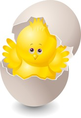 Pulcino Cartoon con Uoco-Chick Cartoon with Egg-Vector