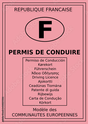 permis de conduire fran ais fichier vectoriel libre de droits sur la banque d 39 images fotolia. Black Bedroom Furniture Sets. Home Design Ideas