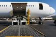 Loading cargo plane - 30025737