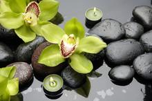 pierres de thérapie et de fleurs d'orchidée avec des gouttes d'eau