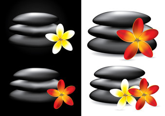 Spa hot stones and flower, zen concept - vector illustration