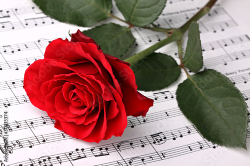 Fototapety, obrazy : Symphony of love 2
