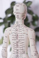 Akupunkturdukke