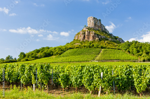 Leinwanddruck Bild Solutre Rock with vineyards, Burgundy, France