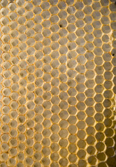 Intresting texture - a honeycomb mesh background