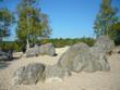 Mer de sable - Paysage de Fontainebleau