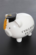 Piggy Bank for College