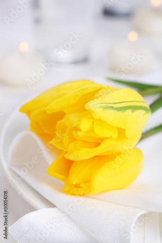 Yellow tulips on white napkin, soft focus