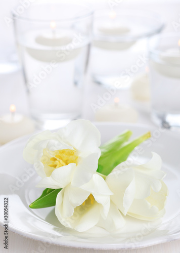 white tulip on white napkin, soft focus