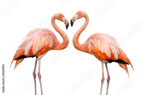 Aluminium Flamingo Zwei Flamingos bilden eine Herzform