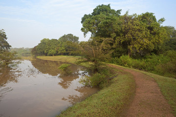 lakeside path at anuradhapura