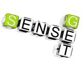 Get Sense Crossword poster