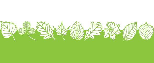Spring leaf design - vector illustration