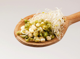 Mung beans and sprouts