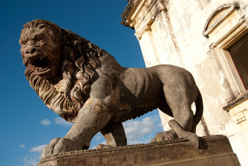 Lion Guarding the Cathedral in Leon Nicaragua