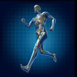 Human running man skeleton x-ray visual bone health poster