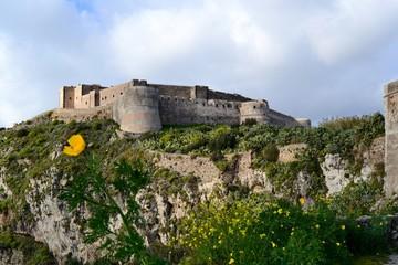 fiore sotto il castello