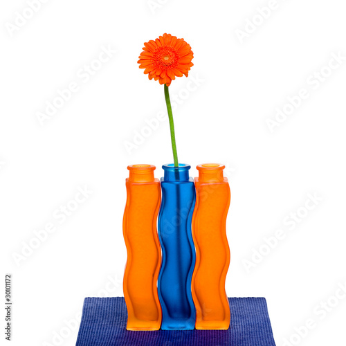 Orange gerbera flower in vase on white background