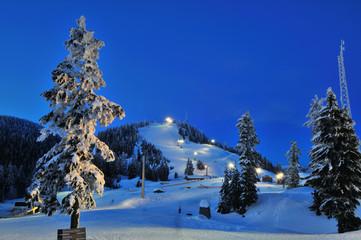 Grouse Mountain night ski scenery