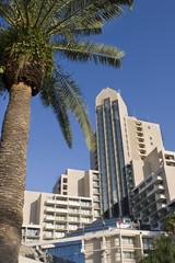 Orlando World Center Marriott Hotel Florida