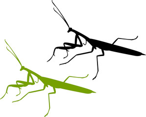 devotee bug silhouette - vector
