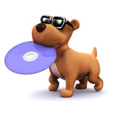3d Dog wants to watch a 3d movie on hd dvd