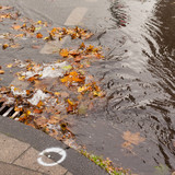 Clogged sewer blocks rainwater runoff poster