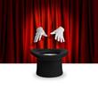 Magic show trick