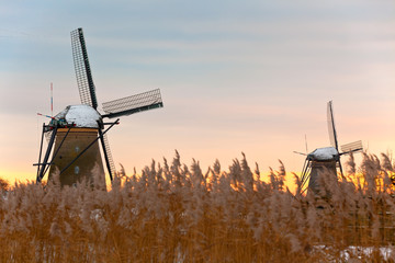 windmills in Kinderdijk at winter sunset