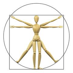 Vitruvian mannequin
