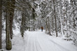 Winter Walk Lake Louise