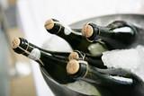 sekt,champagner - Fine Art prints