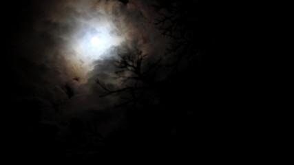 Full Moon timelapse