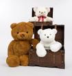 Teddybaeren Gruppe