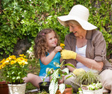 Fototapety Happy Grandmother with her granddaughter working in the garden