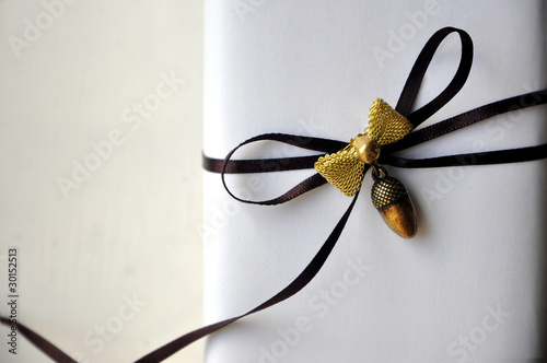 Gift Box with Brown Ribbon