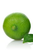 Lime with leaf on a white background