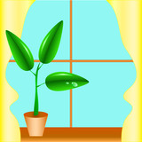 Flowerpot on a window sill, a window with yellow curtains. poster