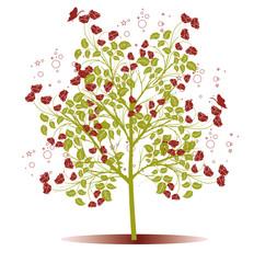 arbres de roses rouges