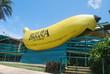ビッグバナナ