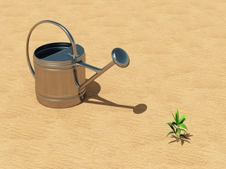 Seedling with watering can in the desert